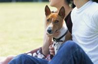 公園のカップルと犬(バセンジー) 21014000116| 写真素材・ストックフォト・画像・イラスト素材|アマナイメージズ