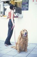 犬(ゴールデンレトリーバー)と女性 21014000121| 写真素材・ストックフォト・画像・イラスト素材|アマナイメージズ