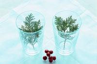 グラスの中の葉と赤い実 21014000838| 写真素材・ストックフォト・画像・イラスト素材|アマナイメージズ