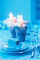 テーブルセッティング 21014000973| 写真素材・ストックフォト・画像・イラスト素材|アマナイメージズ