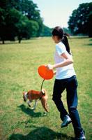 公園でバセンジー犬と走る女性