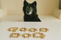 ドックフードで作ったGOODDOGの文字黒い犬