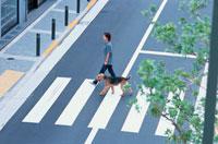 横断歩道を歩く女性と犬 21014001111| 写真素材・ストックフォト・画像・イラスト素材|アマナイメージズ
