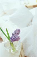 紫のヒヤシンスを活けた花瓶とベッド
