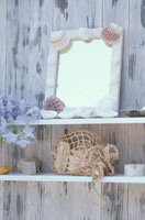 棚の上の貝殻のついた鏡・デルヒニューム・メッシュ袋等