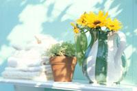 ピッチャーにヒマワリ・タオル・鉢植え植物等