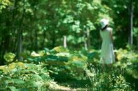 森の中の日本人女性