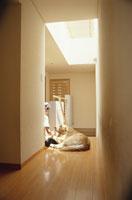 廊下に座っている女性と犬(ラブラドールレトリバー)