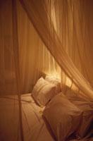天蓋がついたベッド