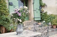 テーブルの上の花瓶に生けたスカビオサ等