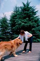 青空の下ウッドテラスで犬と遊ぶ女性 21022001629| 写真素材・ストックフォト・画像・イラスト素材|アマナイメージズ