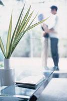 いけた植物と窓辺のカップル