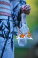 浴衣姿の女性と金魚すくいの袋 21022002187| 写真素材・ストックフォト・画像・イラスト素材|アマナイメージズ