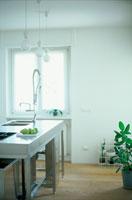 調理台と鉢植えのあるキッチン
