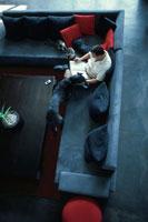 ソファで本を読む男性と犬と2匹の猫 21022002644| 写真素材・ストックフォト・画像・イラスト素材|アマナイメージズ