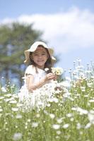 花を摘む女の子 21022002807B| 写真素材・ストックフォト・画像・イラスト素材|アマナイメージズ