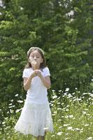 タンポポの綿毛を吹く女の子 21022002810A| 写真素材・ストックフォト・画像・イラスト素材|アマナイメージズ