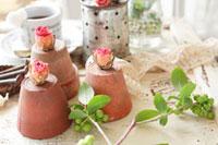 鉢とバラのドライフラワー