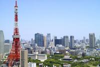 麻布十番から見た東京タワー・汐留
