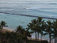ワイキキビーチとパームツリー