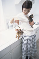 キッチンで猫(アビシニアン)と戯れる女性