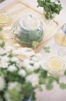 ハーブティーセットと植物