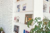 本棚と植木