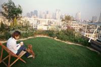 屋上の庭で犬と遊ぶ女性