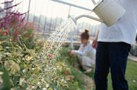 花に水をやる男性と庭仕事の女性