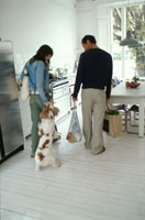 犬を連れて部屋に入る男性と女性