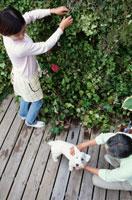 庭仕事をしながら犬と遊ぶ夫婦