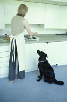 料理をする女性と見ている黒い犬