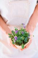 手の中の鉢植え