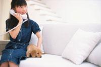 ソファで電話する少女とミニチュアダックス 21028005386| 写真素材・ストックフォト・画像・イラスト素材|アマナイメージズ