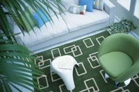 グリーンカーペットと白いソファと植物