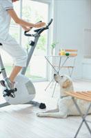 エアロバイクをする女性と白い犬