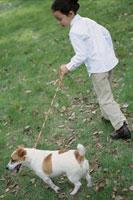 犬を散歩させている日本人女の子
