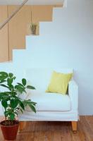 階段とソファと観葉植物 21044000540| 写真素材・ストックフォト・画像・イラスト素材|アマナイメージズ