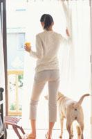 カーテンを開ける女性の後姿と犬