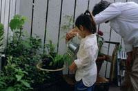 ジョウロで花に水をやる父と子 21044001228| 写真素材・ストックフォト・画像・イラスト素材|アマナイメージズ
