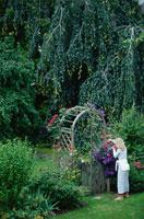 庭の手入れをする女性 21069000318| 写真素材・ストックフォト・画像・イラスト素材|アマナイメージズ