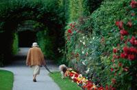 犬の散歩をする女性 21069000335| 写真素材・ストックフォト・画像・イラスト素材|アマナイメージズ