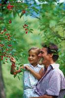 木の実をとる外国人親子