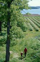草原を歩く人 21069000501B| 写真素材・ストックフォト・画像・イラスト素材|アマナイメージズ