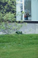 窓辺に立つ外国人の兄弟
