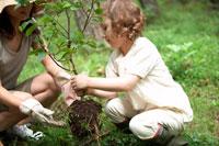苗木を植える母子