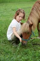 馬に草をやる女の子