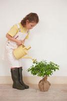 じょうろで苗木に水をやるハーフの女の子