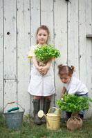 庭で苗木を持っている姉妹