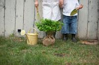 苗木とじょうろと2人の子供の足元 21086000599A| 写真素材・ストックフォト・画像・イラスト素材|アマナイメージズ